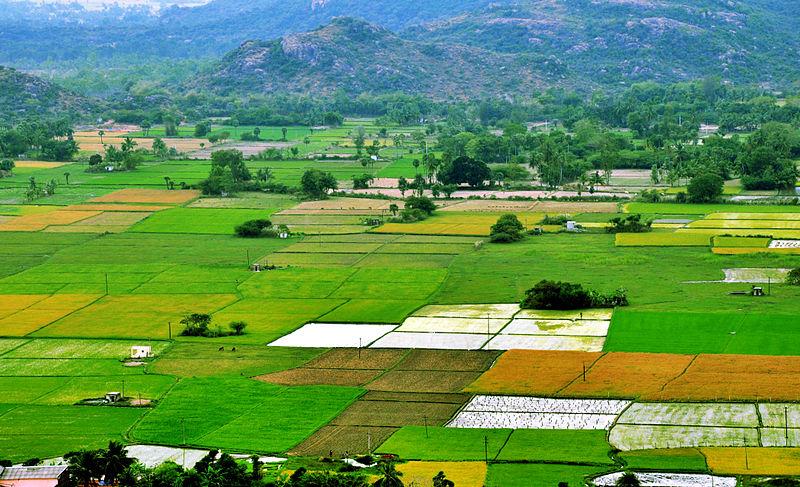 agriculture land in Alwar Rajasthan